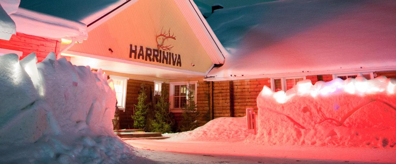 Northern Lights over Harriniva