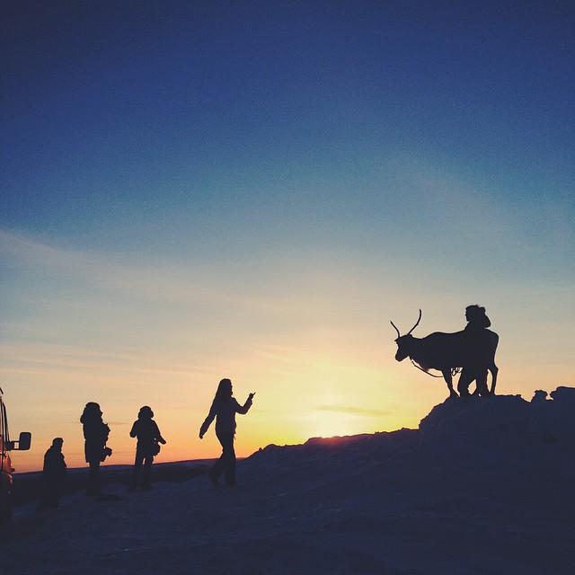 reindeer silhouette in Lapland