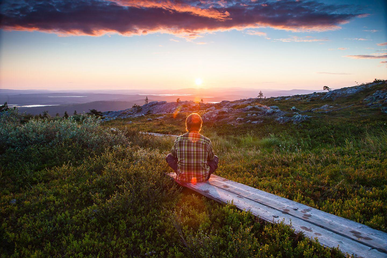 Enjoying the peace in western Lapland with Harriniva Safaris