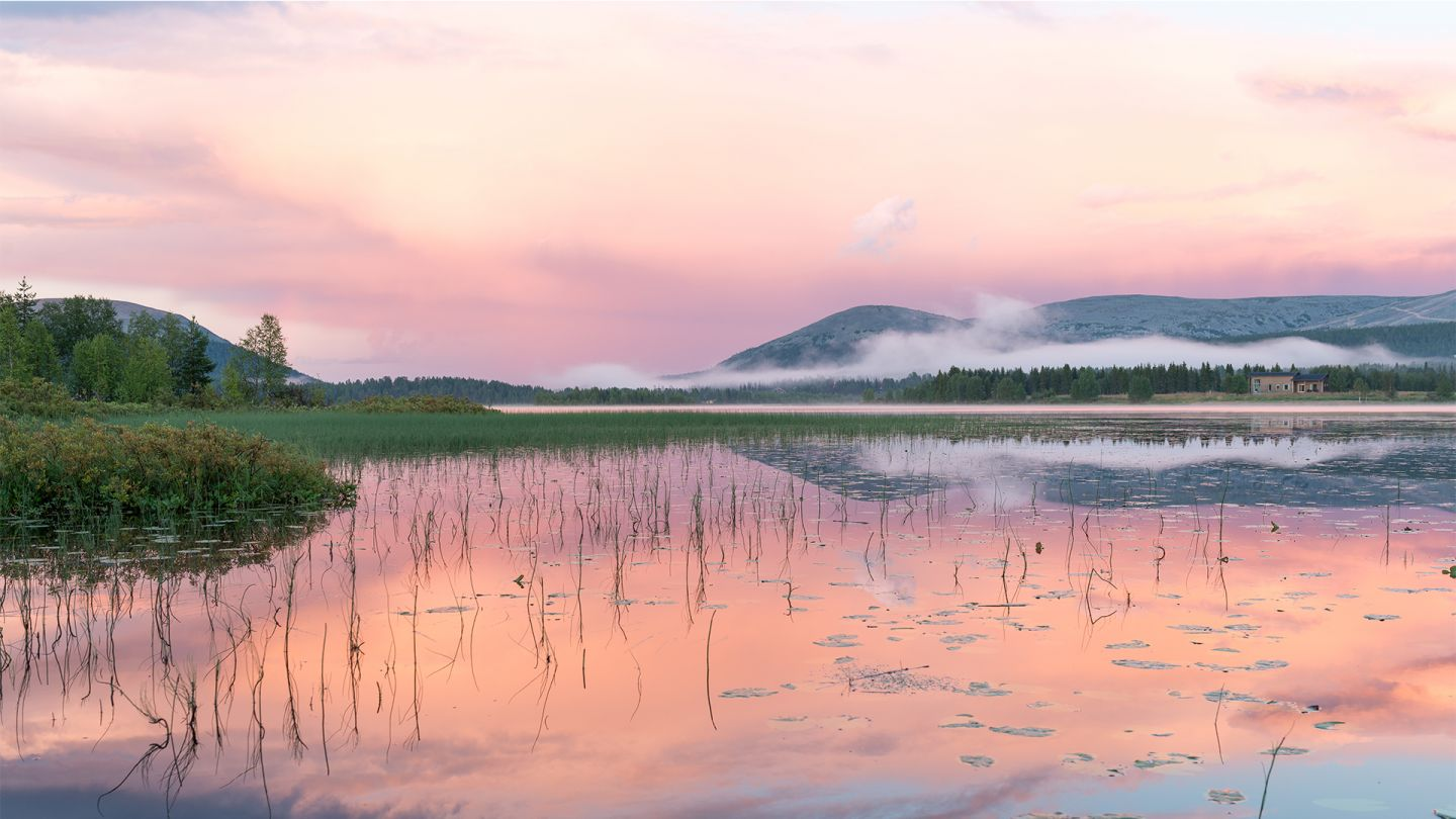 Summer in Lapland, pink moment