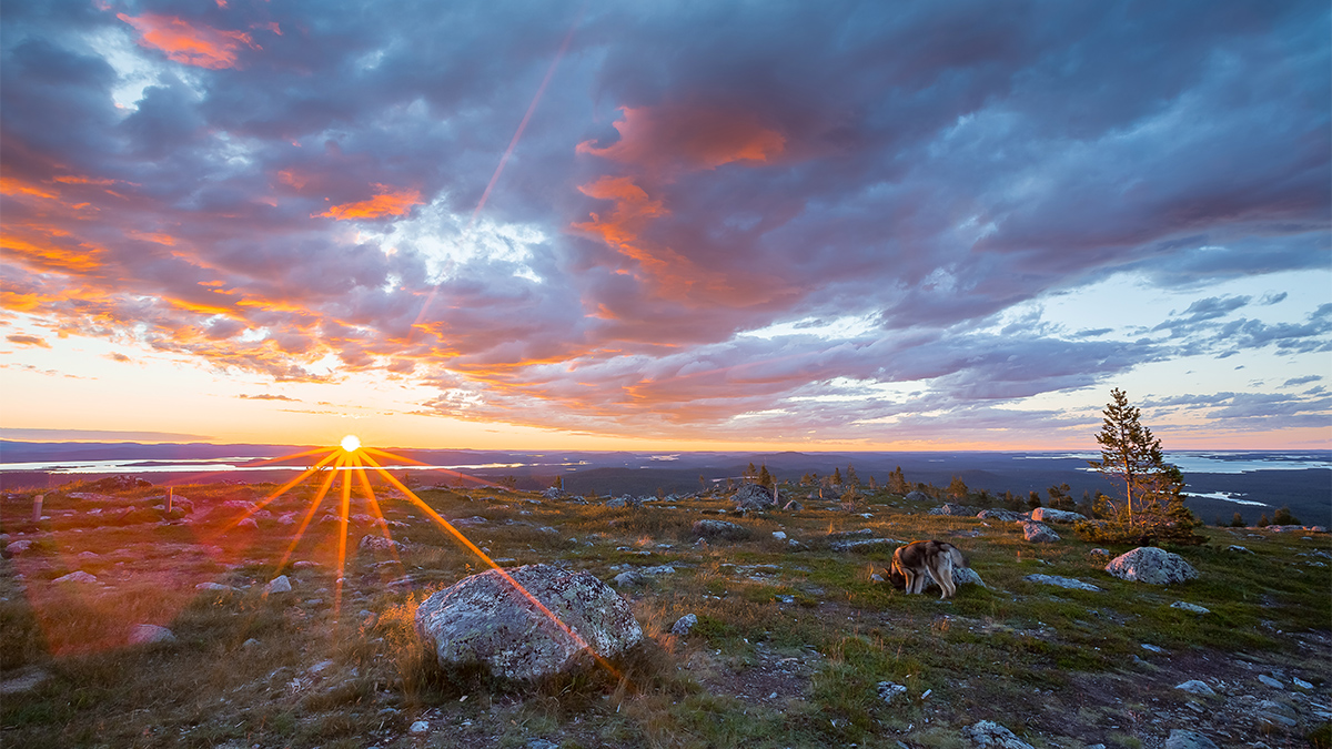 Summer in Lapland, magical Nightless Night