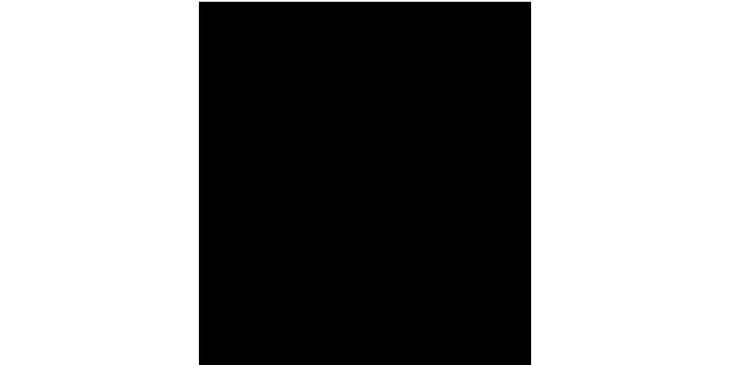 nellim logo black background