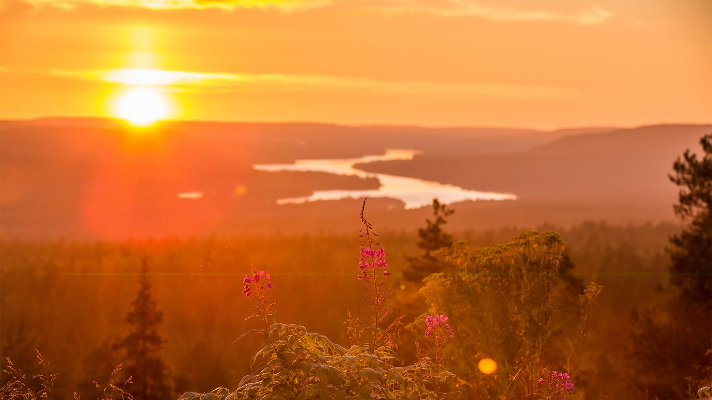 Summer in Lapland, Nightless Night