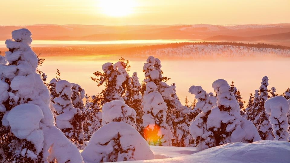 Sunset over a snowy Lapland forest | arctic seasons light