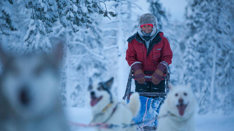 husky ride through snow in Lapland