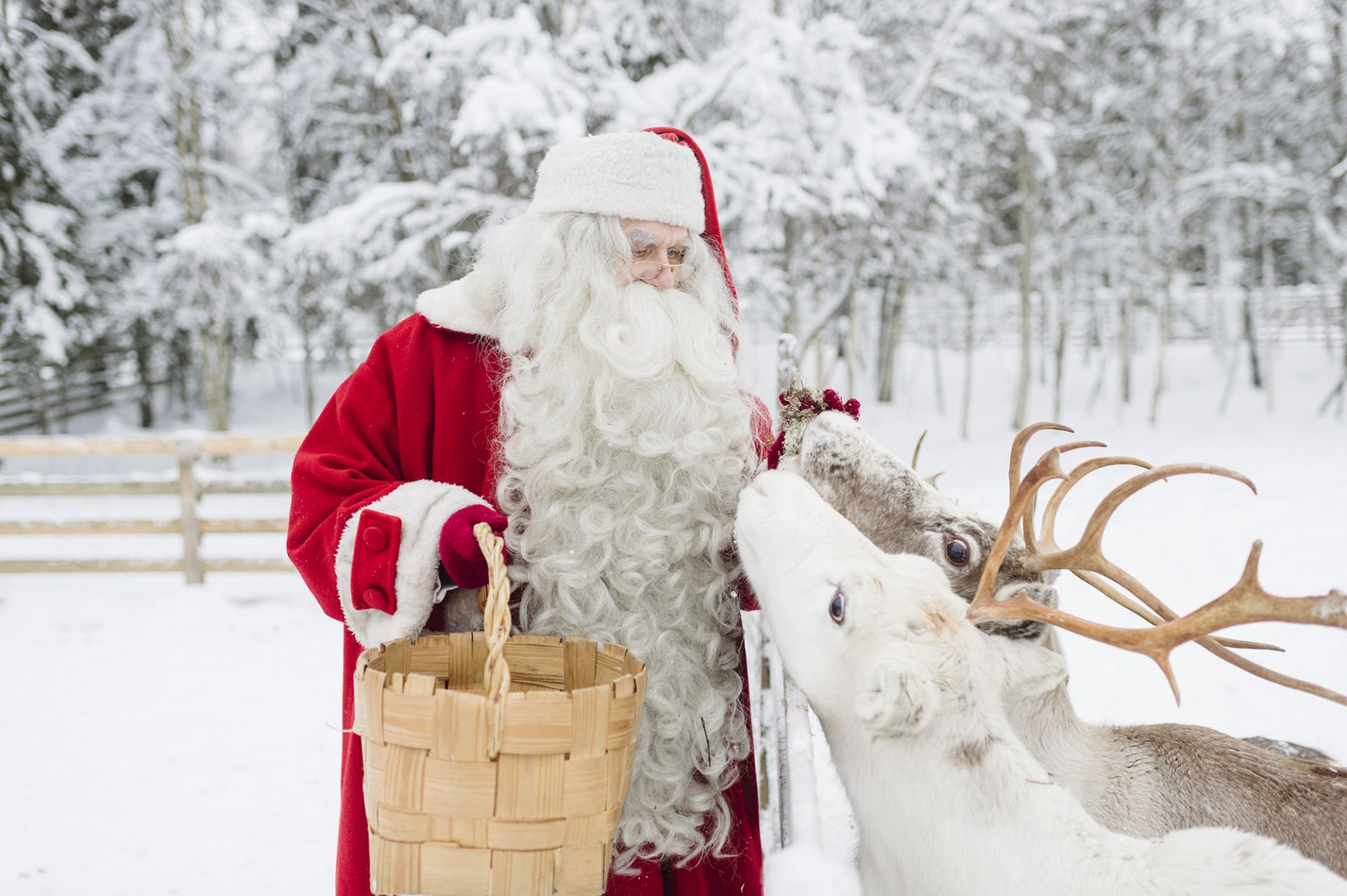 Santa Claus in Lapland