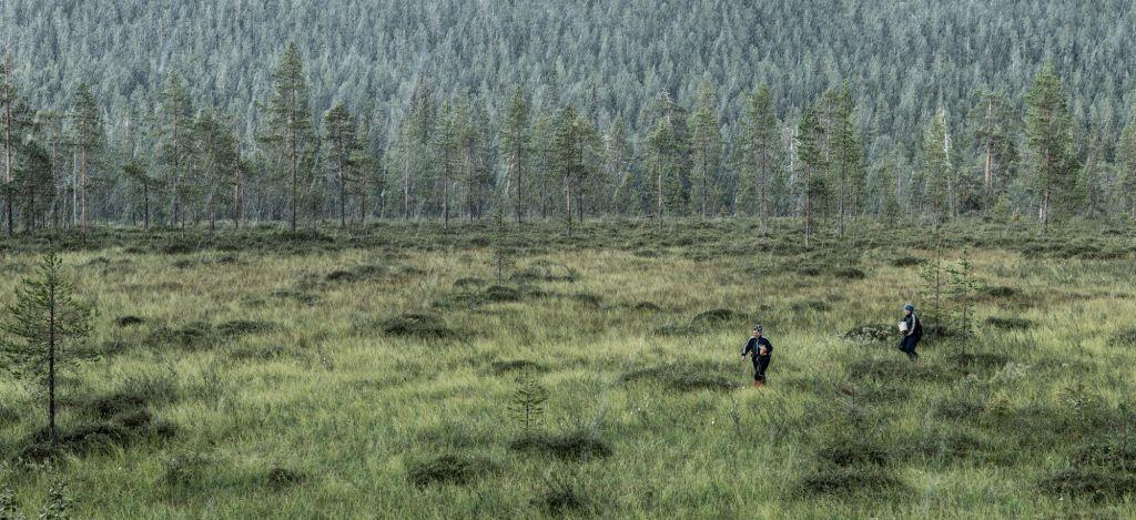 heavy rain fall in Lapland wilderness