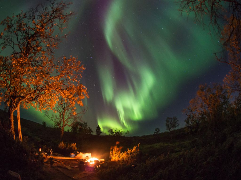 northern lights & campfire in Lapland