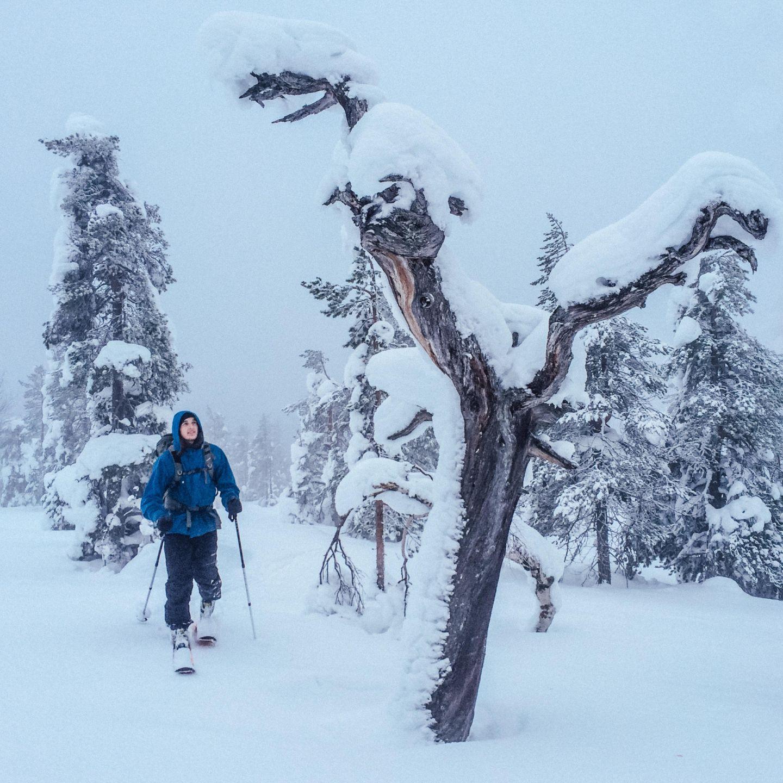 Joonas Mattila on skis in Lapland