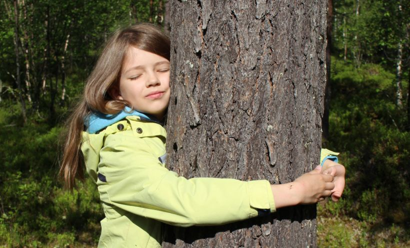 Halipuu for the welfare of arctic forests