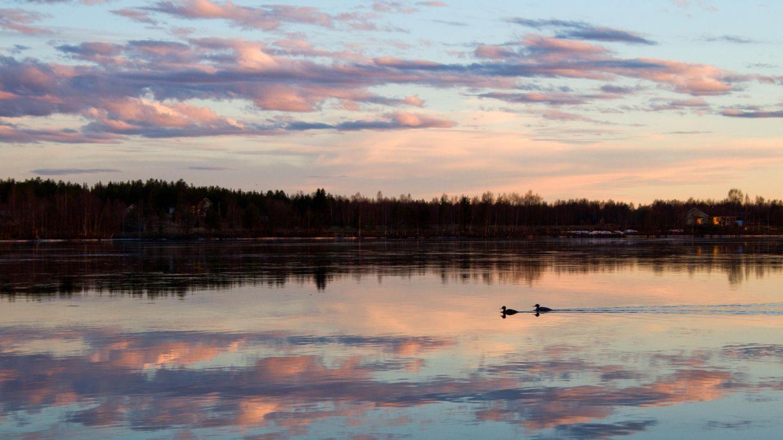 River landscape in Lapland