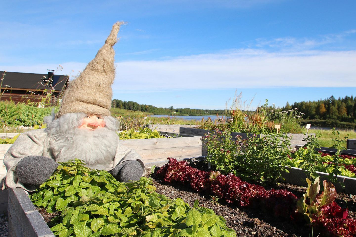 Garden elf at Elves Hideaway in Lapland
