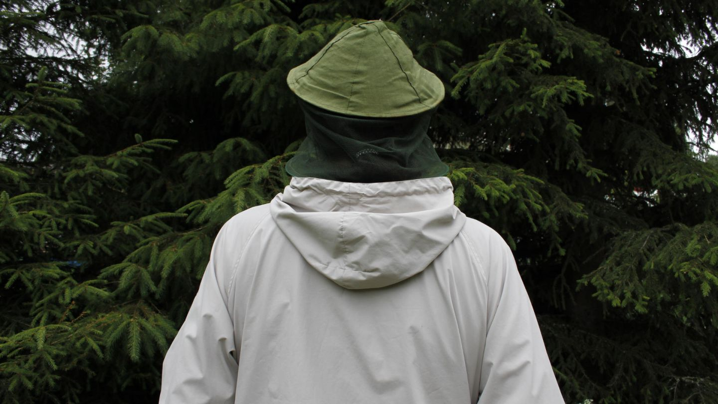 Mosquito hat | how to mosquitoes