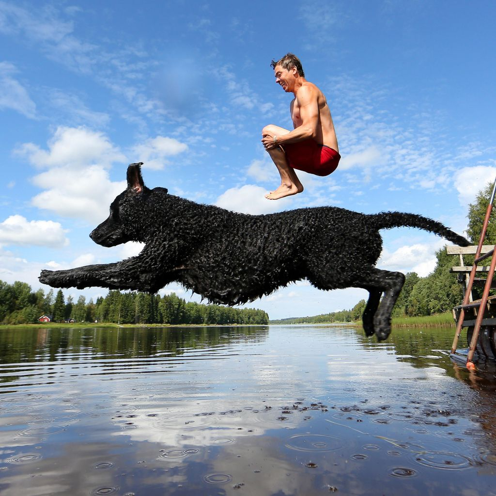 Photographer and dog jump into Lapland river