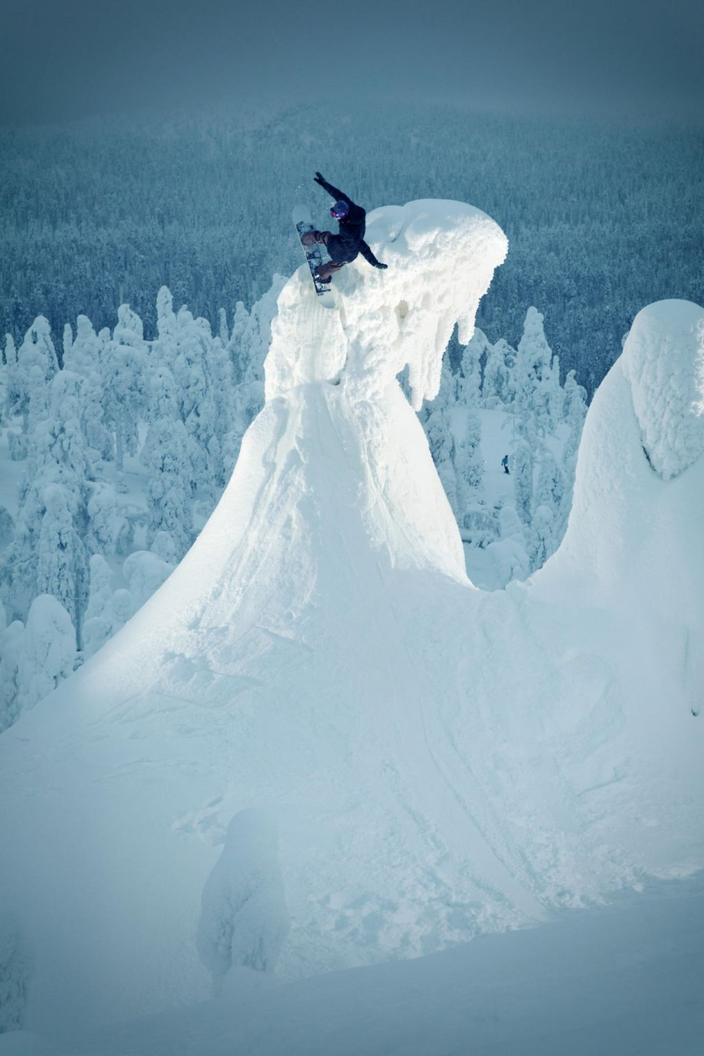Snowboarding on the treetops | finland photographer dog