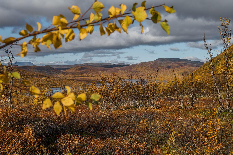 Autumn colors in Enontekiö, Lapland, Finland