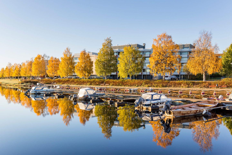 Autumn colors in Rovaniemi, Lapland, Finland