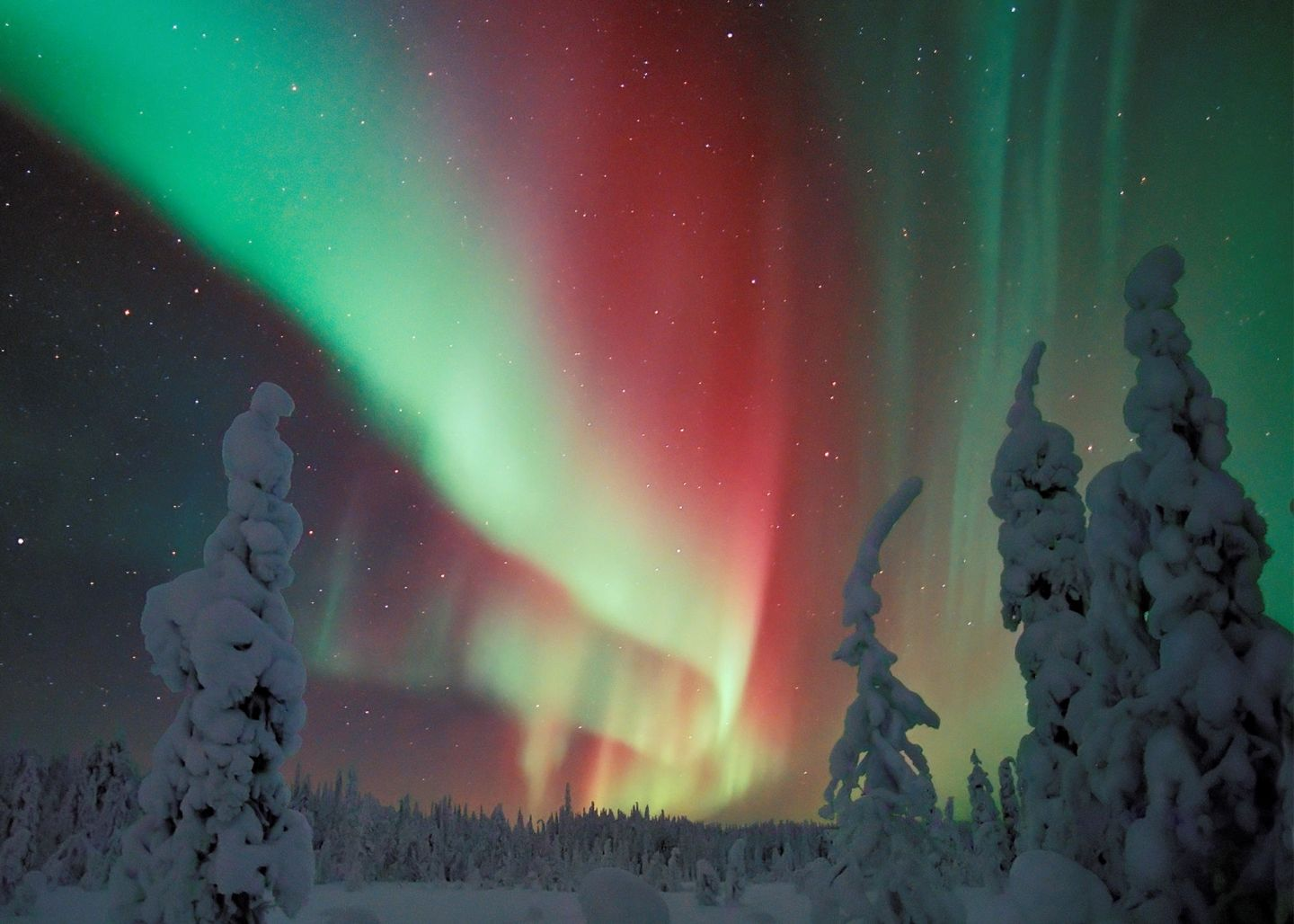 Auroras in Pudasjärvi, south of Lapland