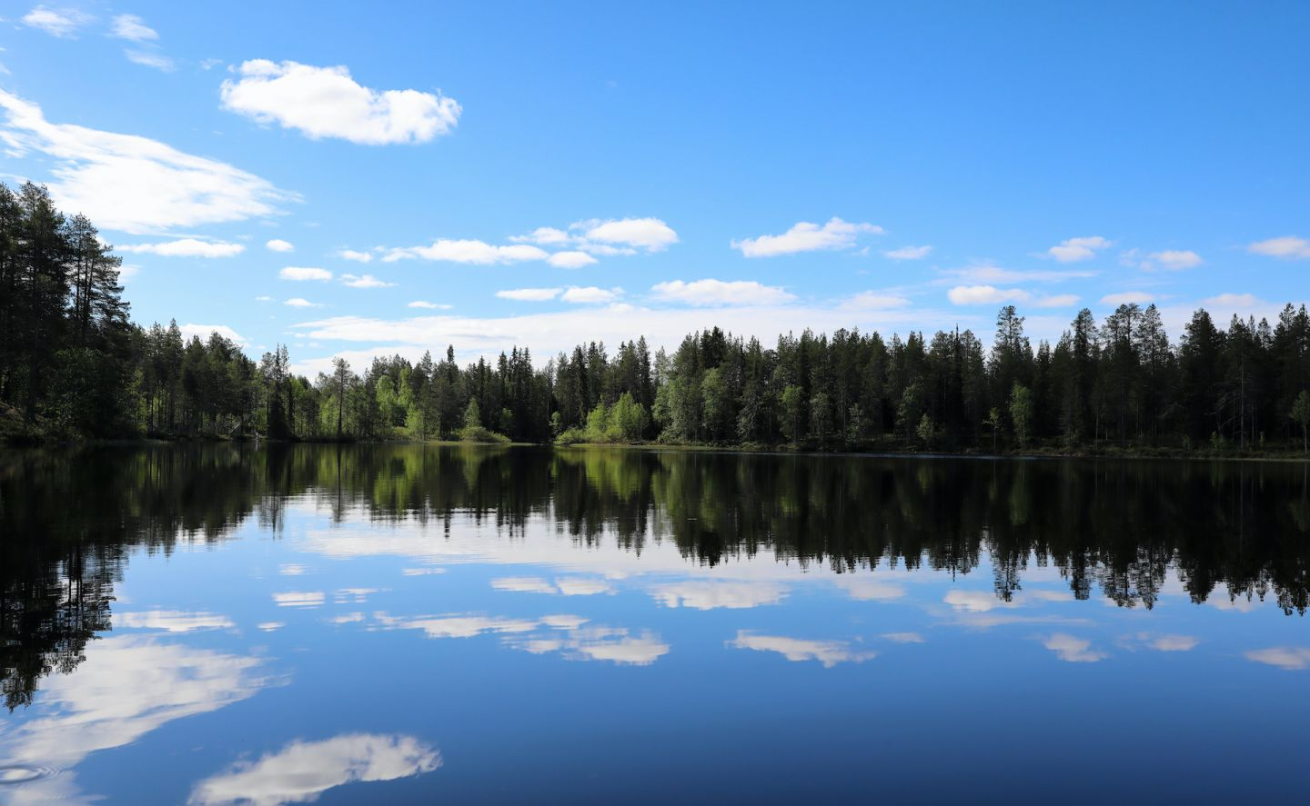 Summer lake in Lapland, Finland