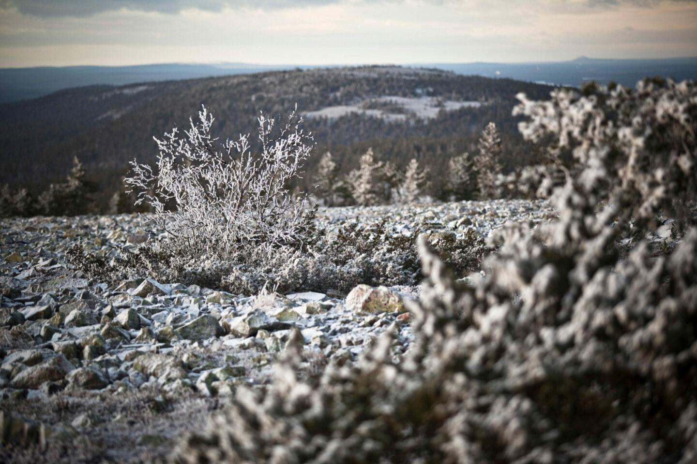 First snow in Sodankylä, Lapland