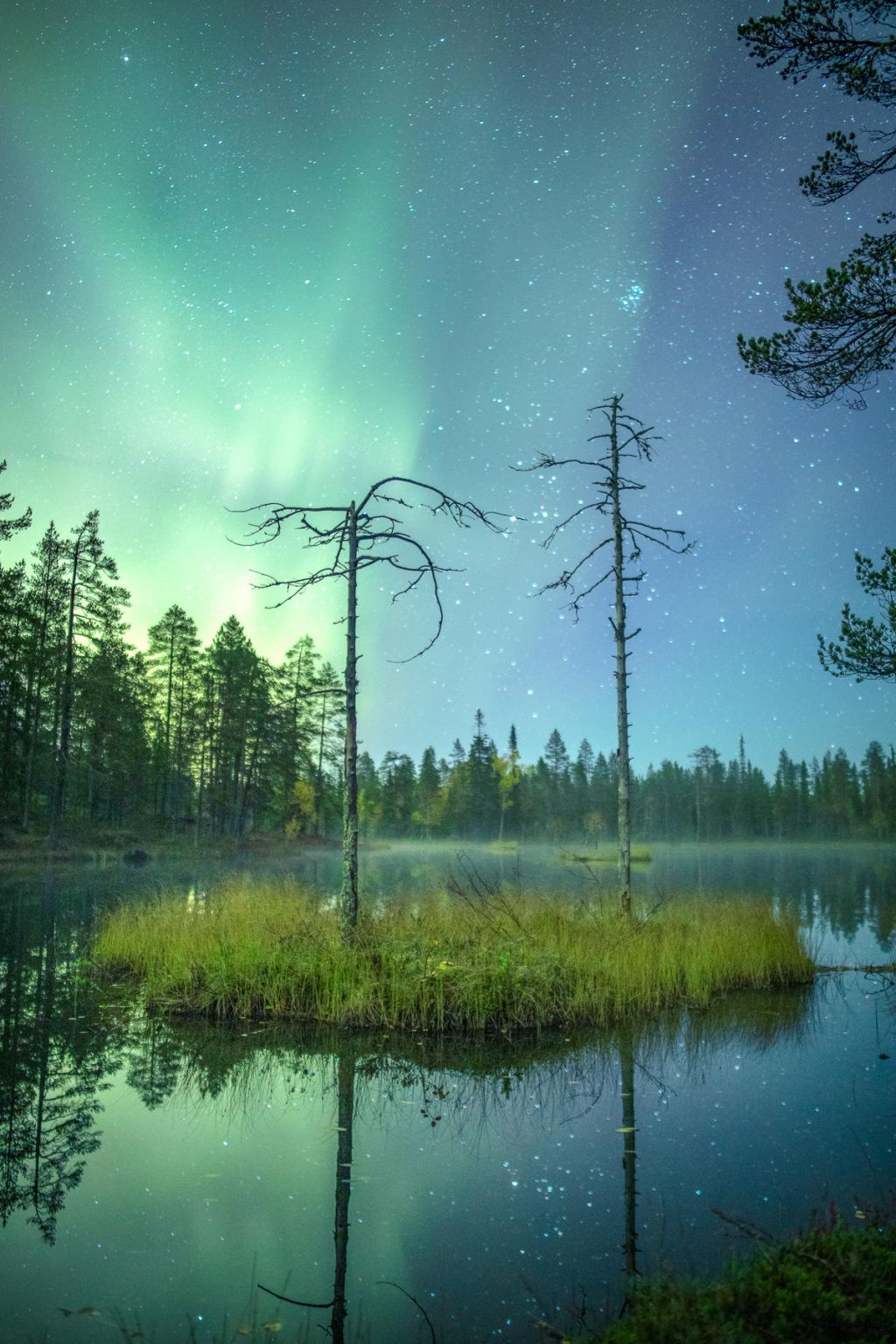auroras over a lake in Lapland