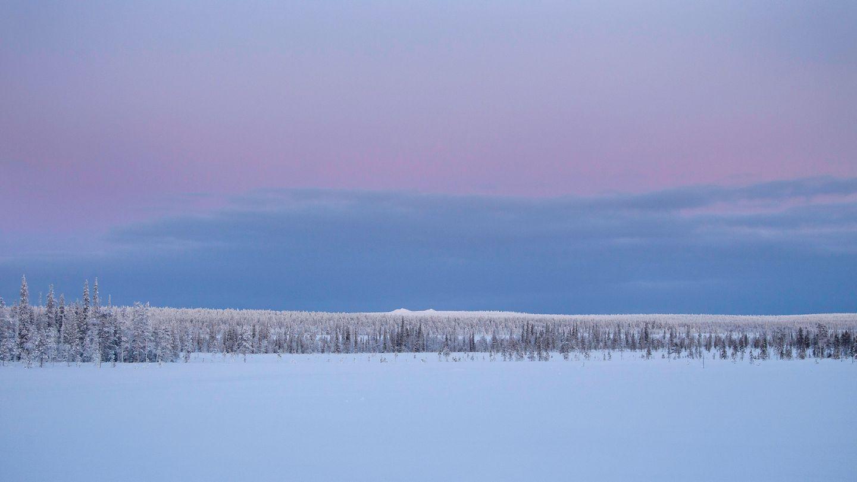 Blue-Moment-Lapland, Polar Night