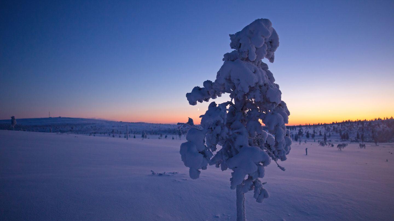 Blue moment, Polar Night colors