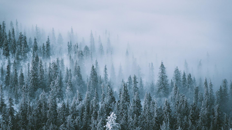 Polar-Night-Finnish-Lapland