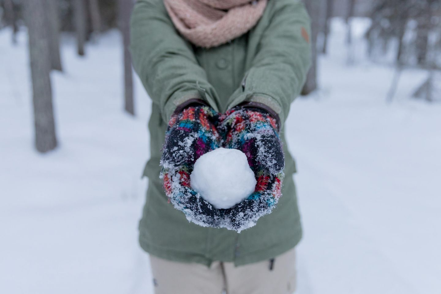 Snowball in Lapland