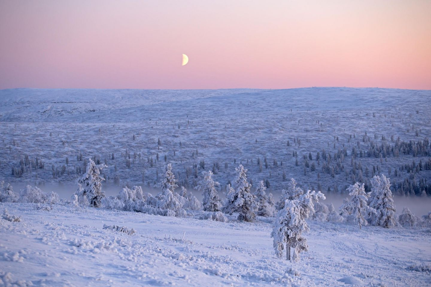 Moon during Polar Night in Lapland, Finland