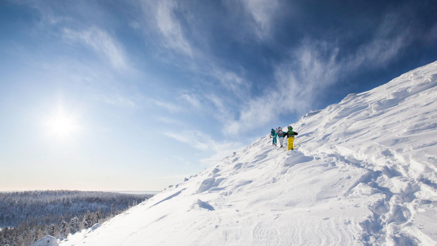 Snowshoers hike across a Lapland fell