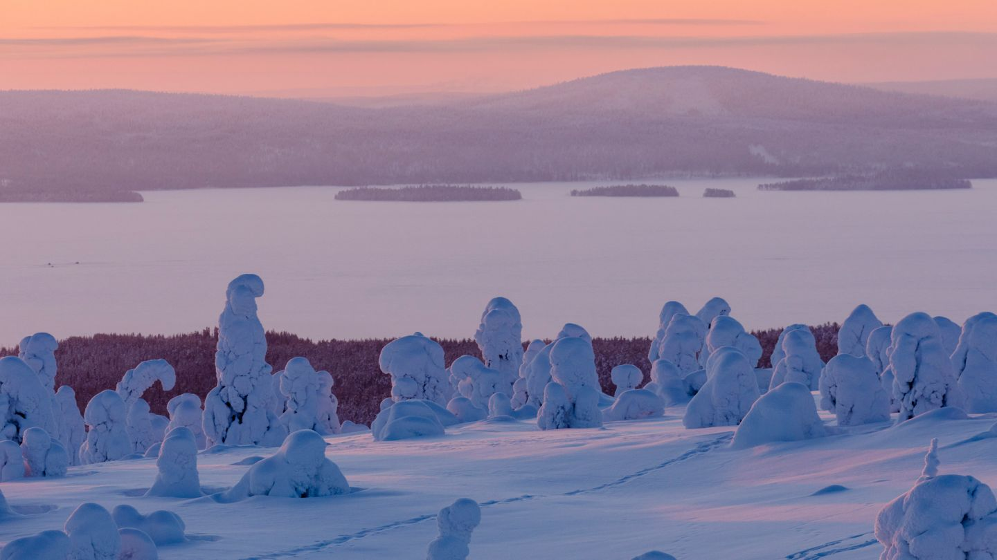 Polar Night in Riisitunturi, Lapland winter holiday, Posio