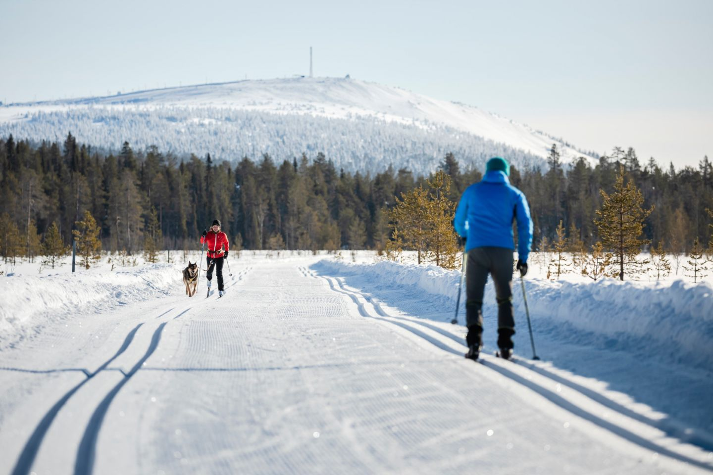Cross-country skiing in Pyhä-Luosto, Finland
