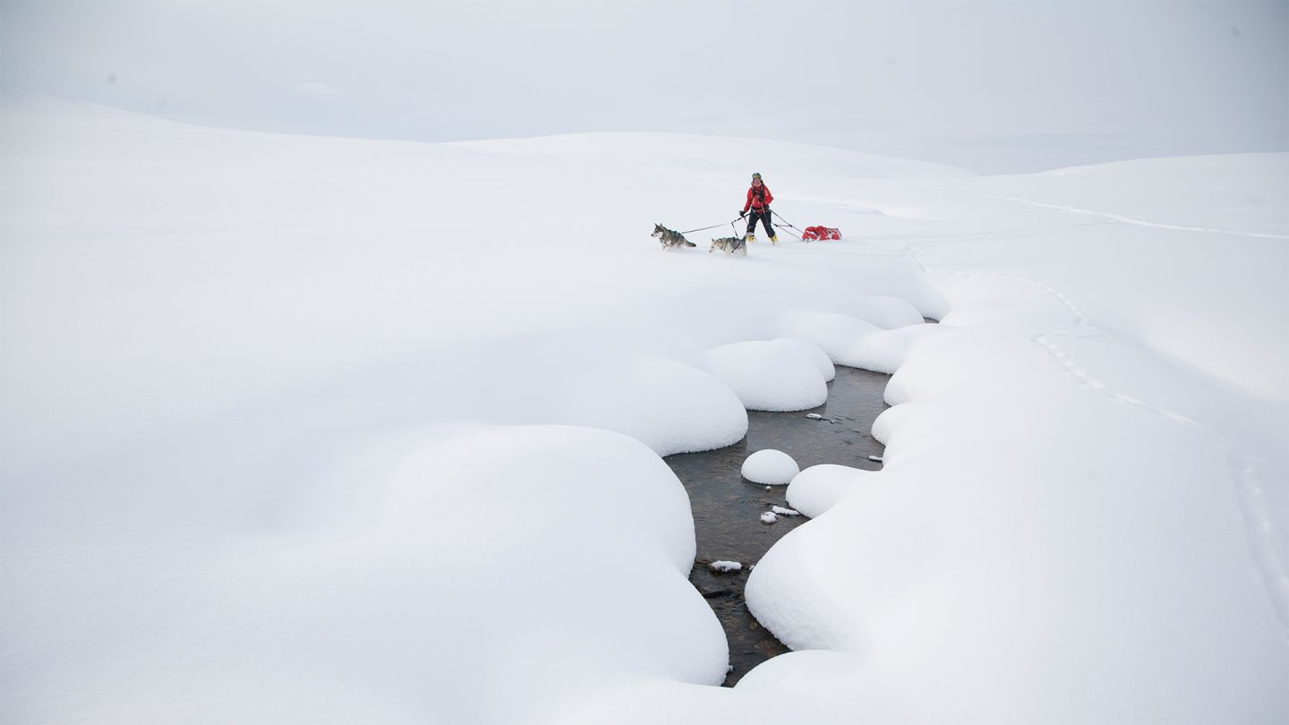 Skiing in Lapland, Finland