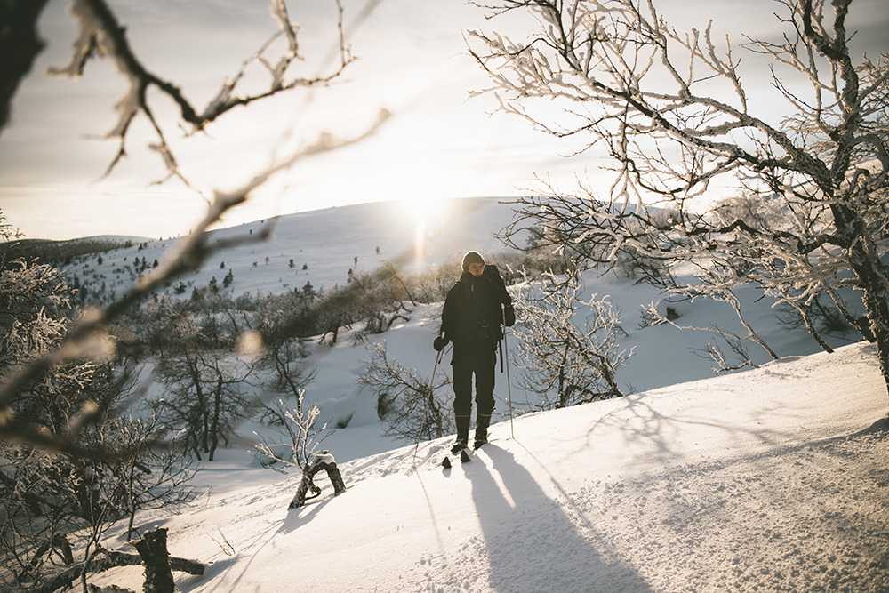 Ski trekking in Pallas, Finland