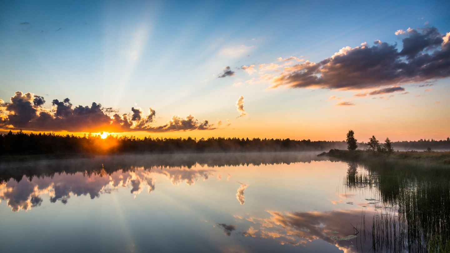 Summer view in Ranua Finland