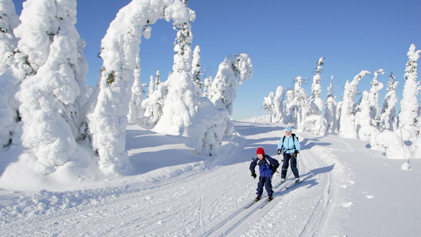 Cross-country skiing in Lapland spring sun