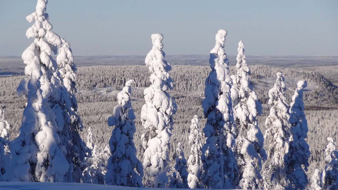 Pello, Lapland in winter