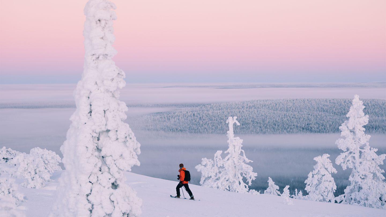 Pink winter in Ylläs, Lapland