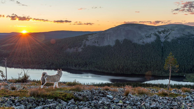 Ylläs - First by Nature | Visit Finnish Lapland