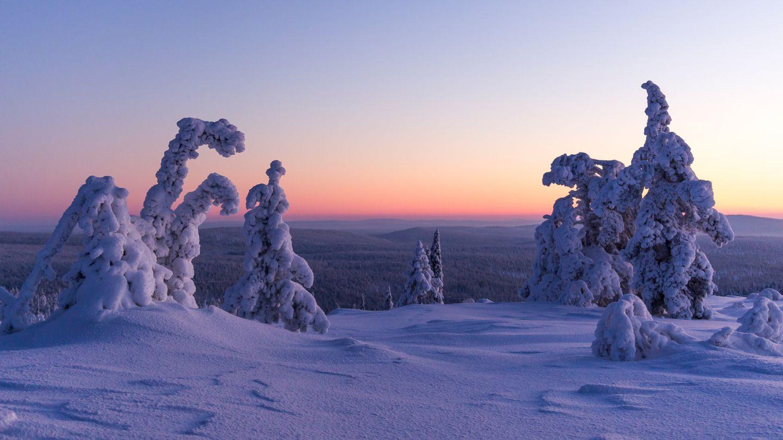 Polar night in Ylläs, Lapland