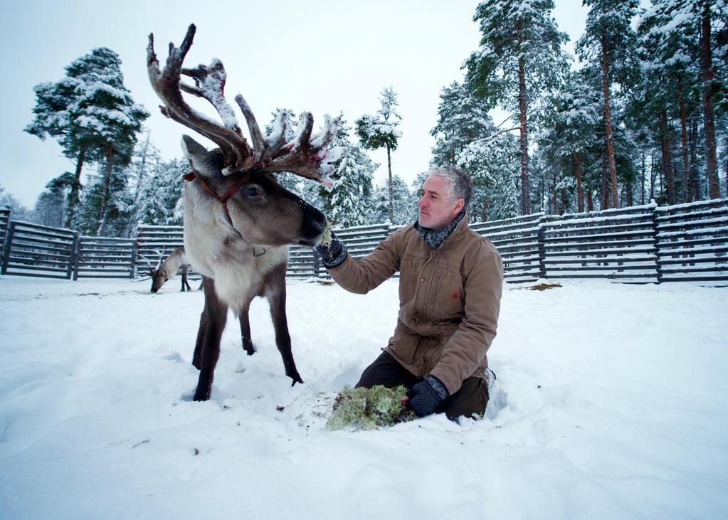 Gordon Buchanan and a reindeer friend in Inari, Finland
