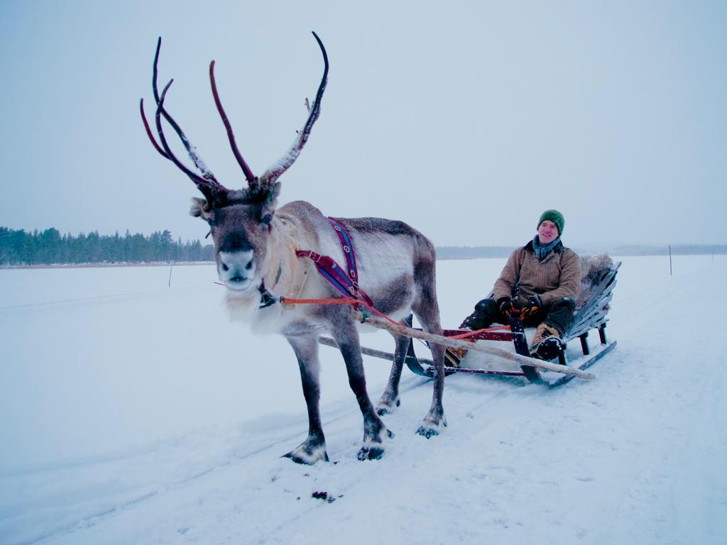 Gordon Buchanan goes on a reindeer sleigh ride in Inari, Lapland