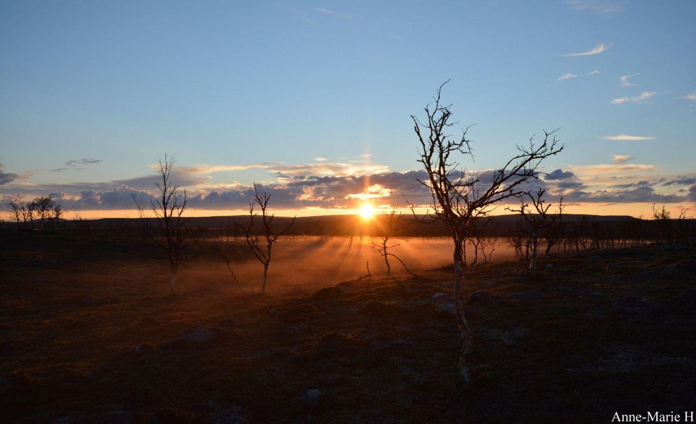 Anne Holmin muuttaminen lappiin auringonlasku