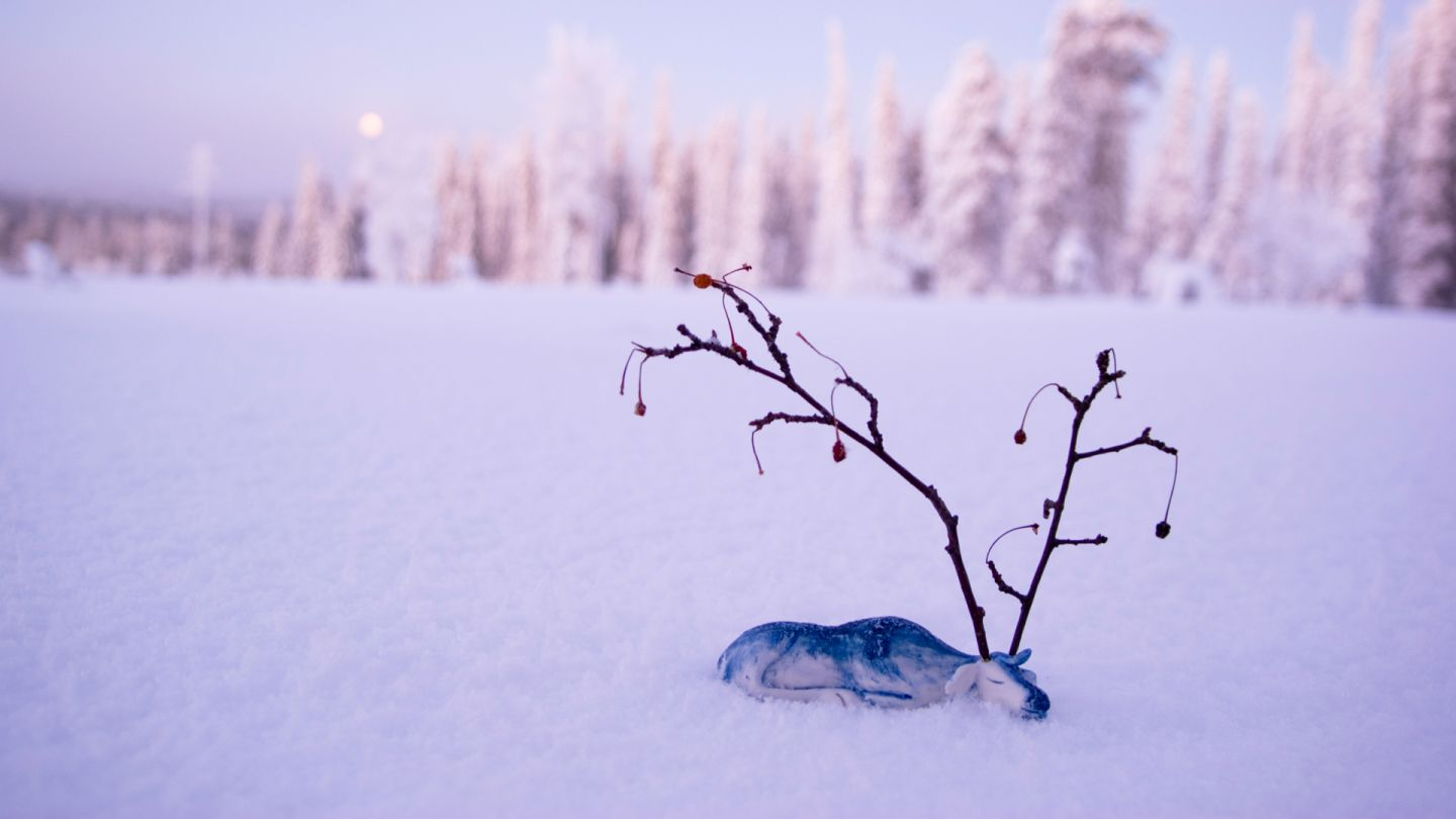 Posio Finland winter art