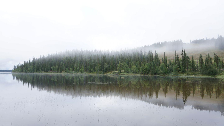Posio Finland summer mist