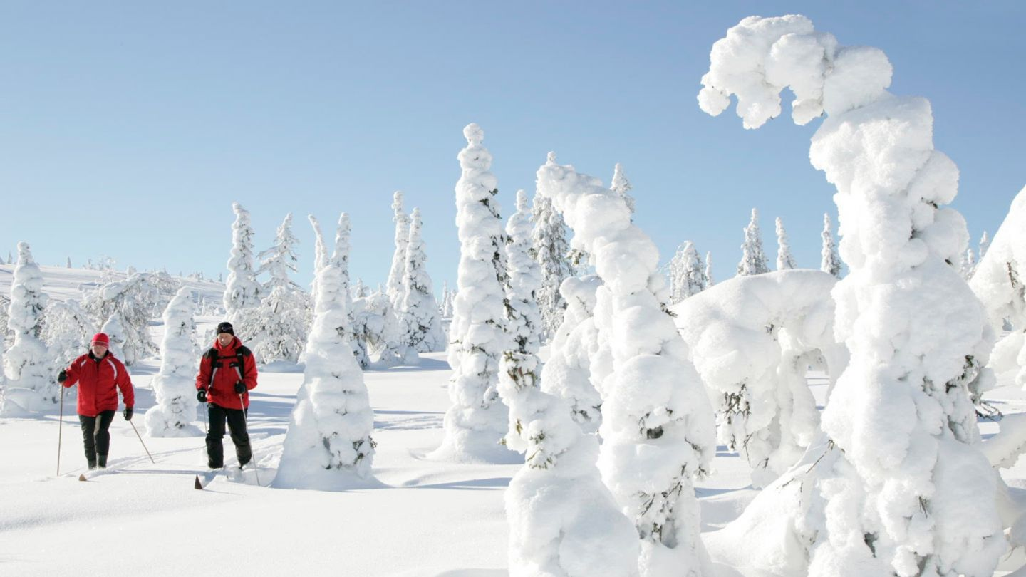 Skiing holiday in Posio Finland in winter