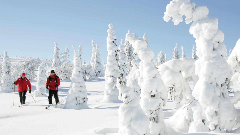 Talvikauden saavutettavuus