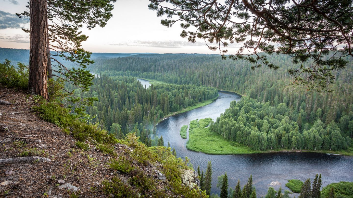 Summer river in Scandinavia, Ruka, Finland