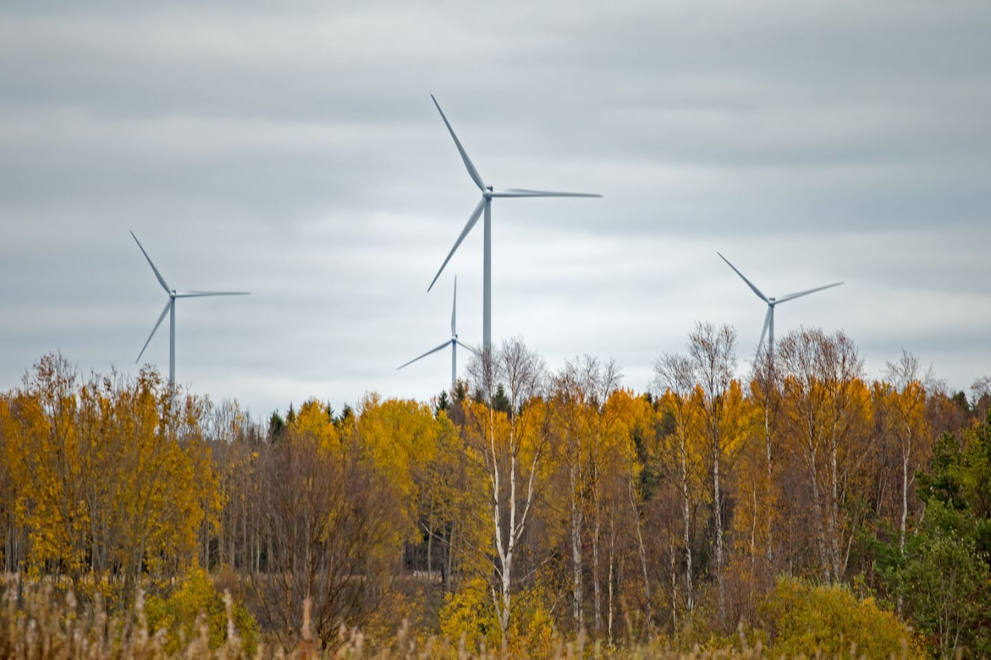 Wind turbines in Tervola Lapland